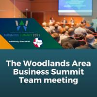 Business Summit Team Meeting