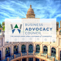 Business Advocacy Council Monthly Meeting