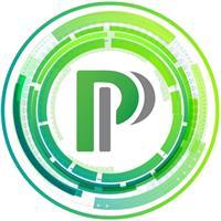 Payed Processing, LLC
