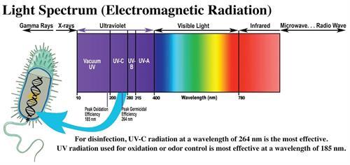 UvLightSanitizingSystems.com How UV Light Kills Germs, Viruses, Bacteria, Mold, Allergens