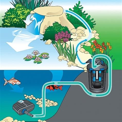 UvLightSanitizingSystems.com Pond and Pool Sanitizing Systems. Our Systems maintains water clean