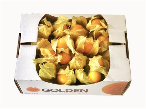 Fresh Goldenberries with Calyx