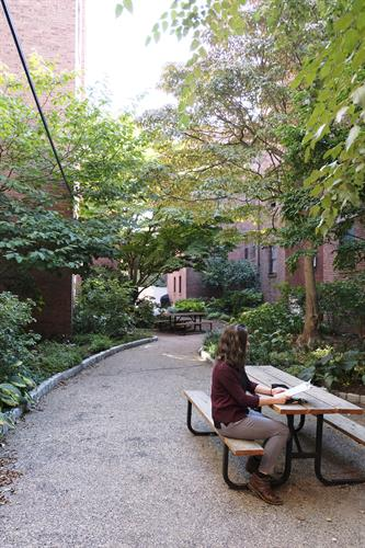 Seating in a lushly planted courtyard in a Jamaica Plan condominium complex