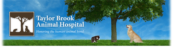 Taylor Brook Animal Hospital