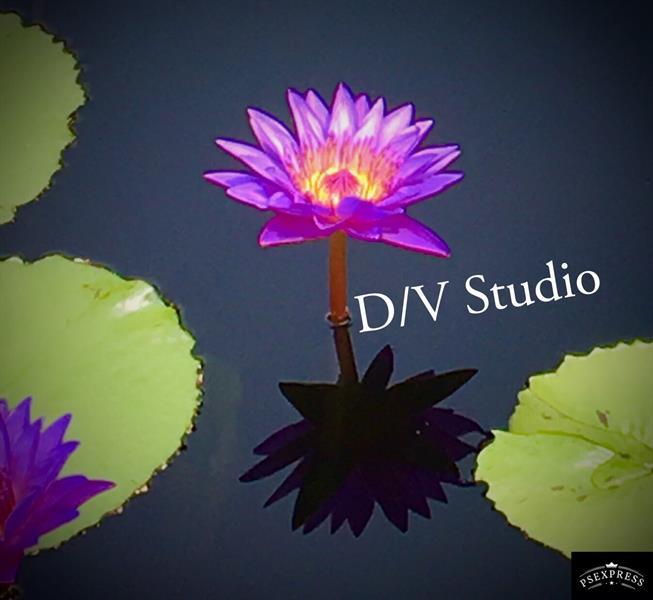 D/V Studio