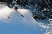 Powder skiing at Mt Abram!