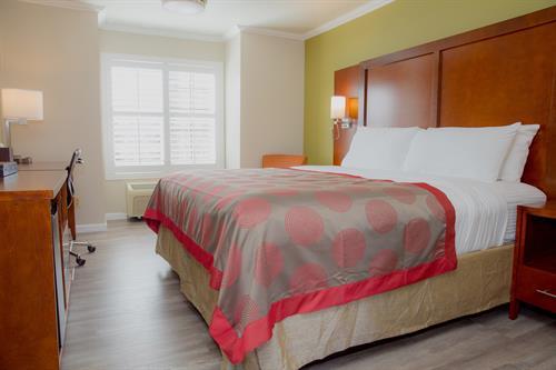 Modern guestrooms