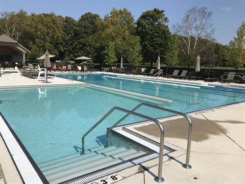 Newly renovated lap pool