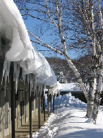 Clear winter days at Birchwood Inn
