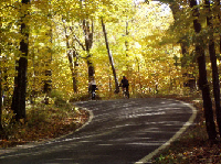 """""""Tunnel of Trees,"""" part of Harbor Springs Cycling Classic"""