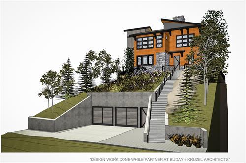 Colorado Mountain Modern