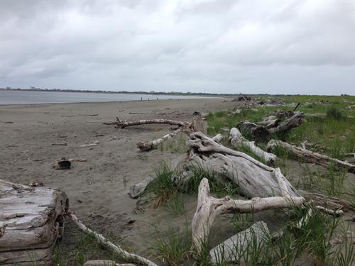 Walking / running /biking distance to car-free beaches at Damon Point