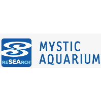 Mystic Aquarium's Annual Fun Run for Penguins Goes Virtual