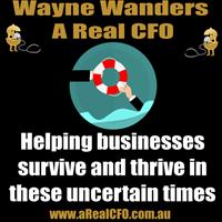 A Real CFO