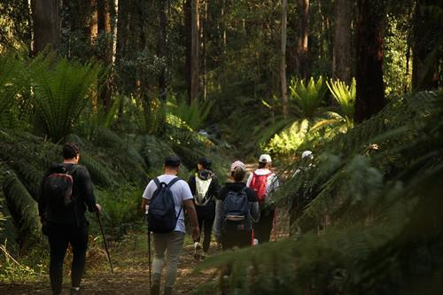 Group heading out on the trail in Yarra Ranges, Victoria. As at Jan 2020, Gone Bush operates across VIC, NSW & QLD