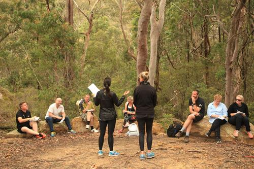Wellbeing masterclass in the Blue Mountains along the iconic Six Foot Track