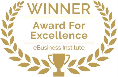 Gallery Image 1-eBusiness-Institute-Award-For-Excellence.jpg