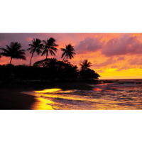Mayflower Cruises & Tours 2021 Travel -  A Virtual Presentation with Q&A on Two Great Trips:  Florida Adventure & Hawaii Three Island