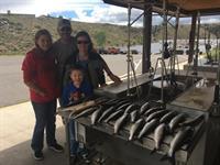 Blue Mesa kokanee salmon limits!