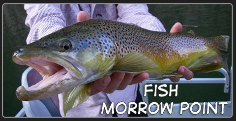 Guided Fishing- Morrow Point-Black Canyon of the Gunnison