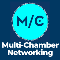 "Multi-Chamber Virtual Networking: Master Your ""Elevator Pitch"""