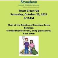 Stoneham Community Clean-Up
