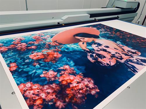Large Color Print - UV Flatbed - Warwick, NY