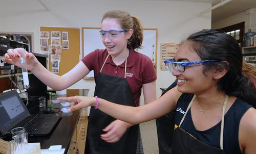 Upper School Chemistry lab