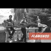 Flamenco Night at Fitzgerald's Patio