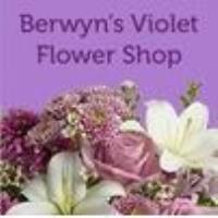 Berwyn's Violet Flower Shop, Inc.