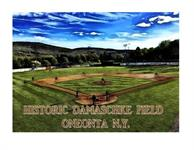 Oneonta Outlaws Baseball Club