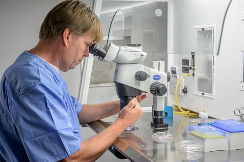 Tissue Bank Director, Corey Burke, working in the Cryos egg bank