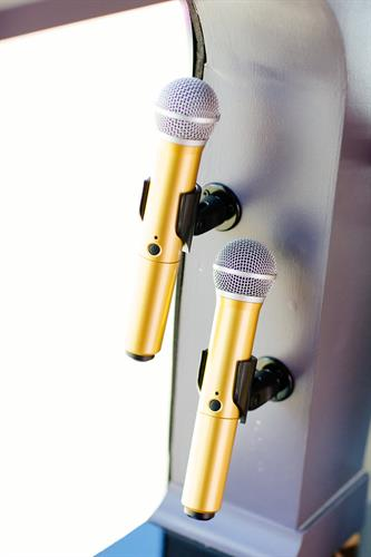 Our Gold Mics