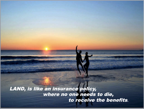 Gallery Image Land_is_like_an_insurance_policy.png