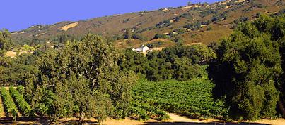 Galante Family Winery
