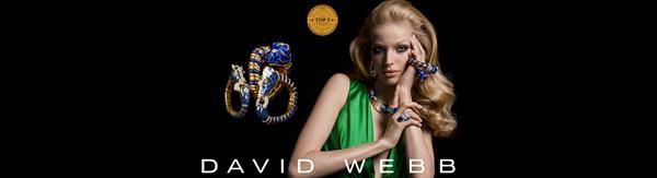 Authorized David Webb dealer