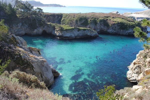 Tours to Point Lobos