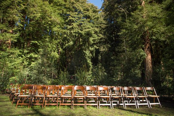 Wedding in our Redwood Grove
