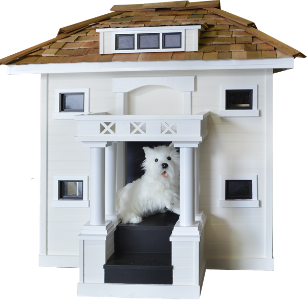 "Carmel Canine Cottage Competition ""Best in Show 2016"""