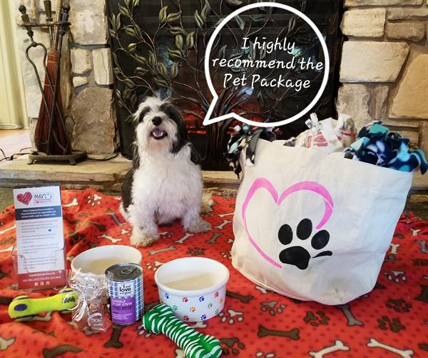Pamper your Pooch