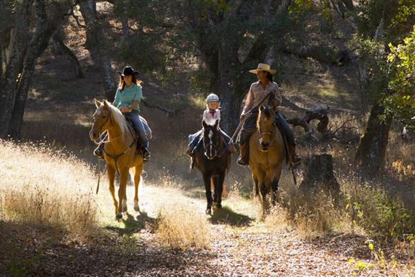 Trail Ride at The Preserve