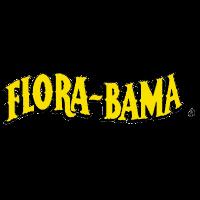 Flora-Bama Bulls on the Beach