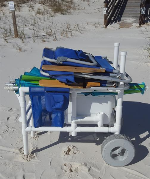 Sharks In Perdido Key Florida: Coastal Color Carts And Outdoors LLC