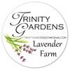 Trinity Gardens Lavender Farm