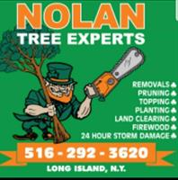 Nolan Tree Experts