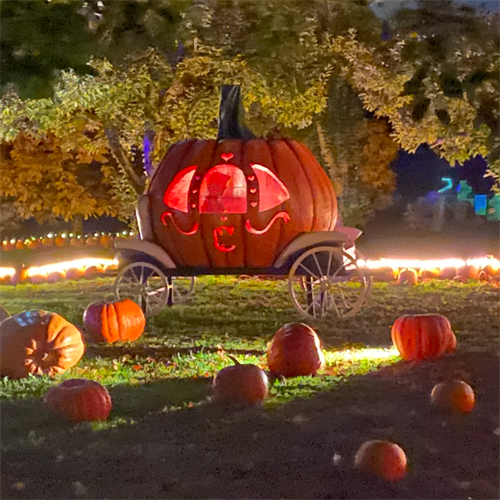 We make your Halloween dreams come true!
