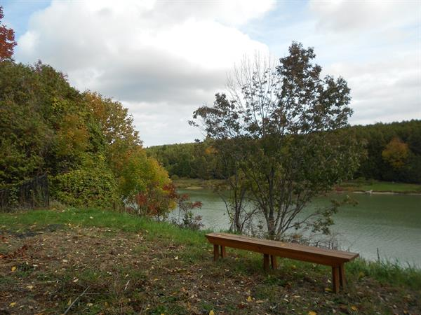 Saugeen River from Rosewood Cottages