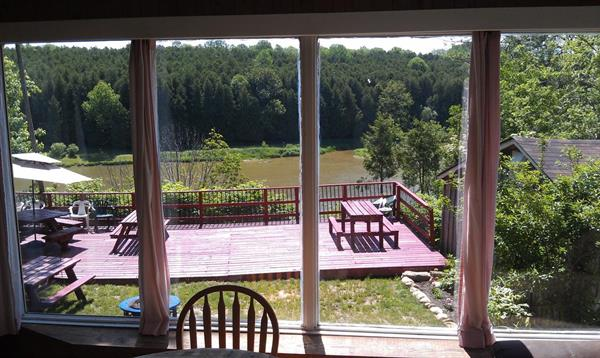 View from the Rosewood Vacation House Window