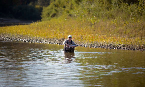 Great fishing in the Saugeen River