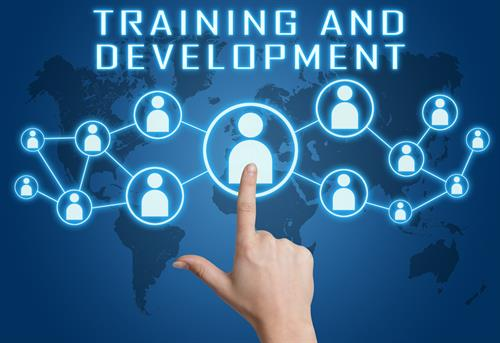 We provide custom designed training and development